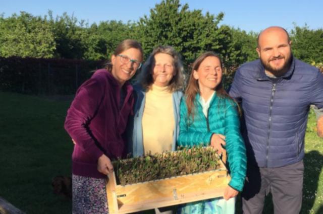 Зеленоградские кедры высадили в Италии