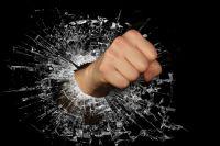Молодой человек разбил цветочные горшки и вырвал светильники