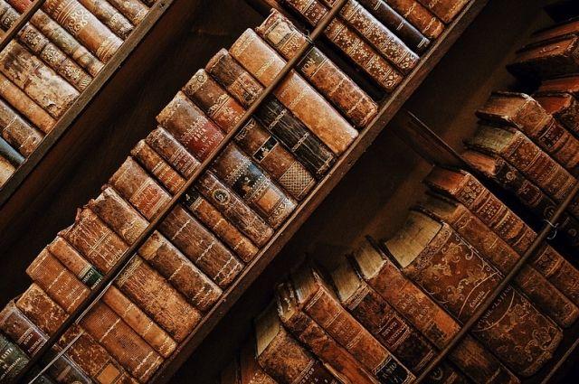 В Украинское государство запретили ввоз из Российской Федерации книги овикингах