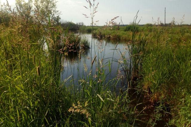Инцидент произошёл в селе Шуртан Октябрьского района.