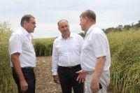Разговор в поле: Сергей Шумский, Владимир Ситников и Алексей Клевцов.