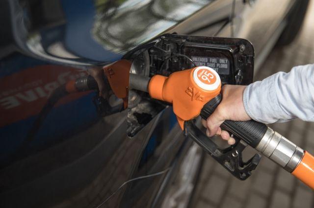 Самая важная статья расходов – топливо – вполне поддается корректировке.
