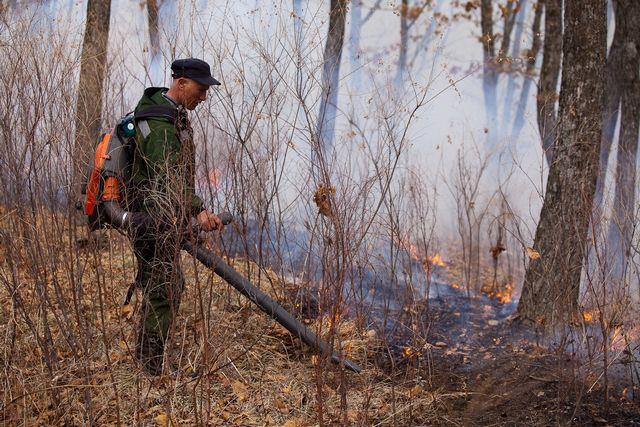 18 лесных пожаров в крае не тушат, они под контролем спсателей