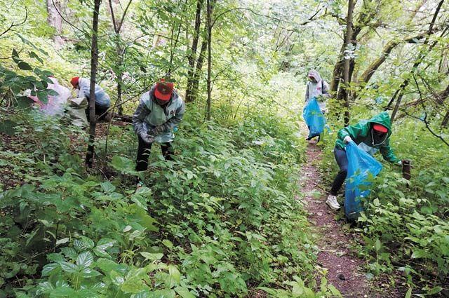 Активисты убрали мусор из реки и расчистили тропы.