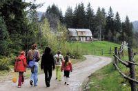 Клещи, которые попадают на тело человека в лесу, парке или на даче, могут быть заразны.