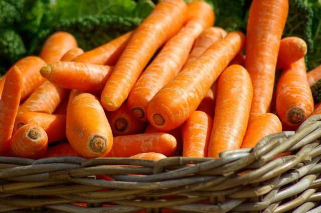 На омской границе задержали 40 тонн казахстанской моркови и картофеля