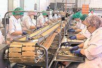 Рыбоперерабатывающий завод в Салацгриве.После введения запрета на ввоз в Россию шпрот в 2014 г. производство сократилось втрое.