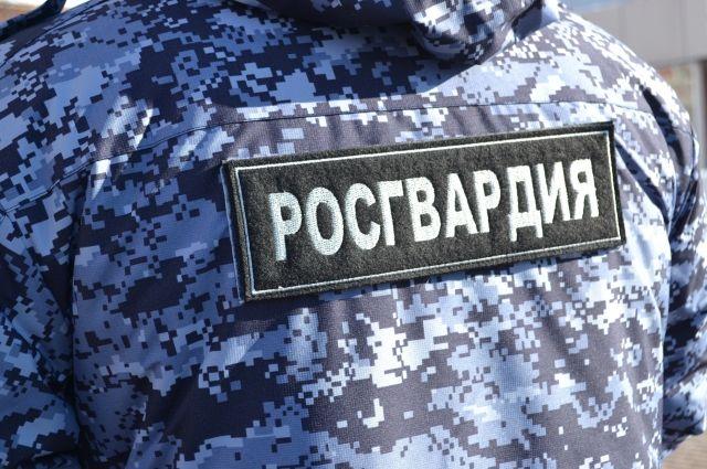 Сотрудники Росгвардии обследовали боеприпасы, найденные в Московском районе