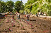На территории сквера оборудовали клумбы и высадили цветы.