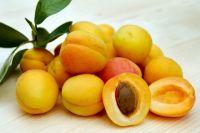 Зараженные фрукты отправили на их родину