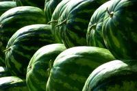 В ранних плодах есть риск наличия нитратов.