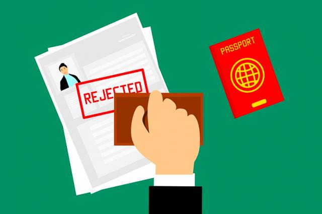За первые дни на получение электронных виз подано более 2000 заявок