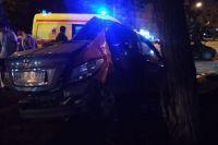 ДТП произошло в 3:10 ночи, автомобиль Hyundai Solaris совершил наезд на препятствие, предположительно, камень, а затем столкнулся с деревом.