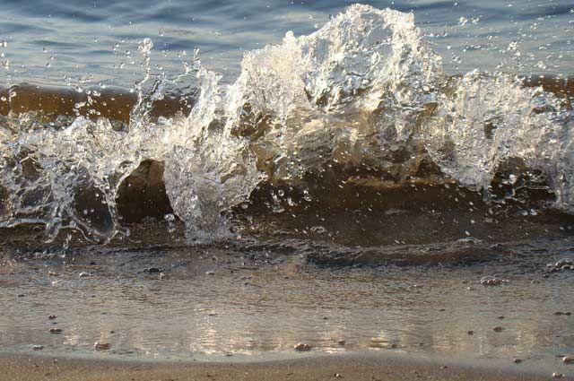 Сообщается, что причиной запрета на пляжный отдых является чрезмерно грязная вода в Оби.