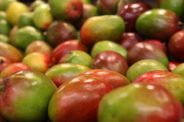 Почти тонну бразильского манго не пустили в Калининградскую область