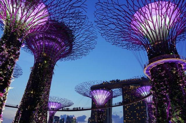 По результатам оценки рейтинга эффективности 10 лучших из вас получат возможность стажироваться в одной из самых развитых стран – Сингапуре.