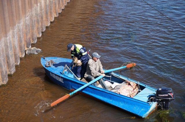 В Удмуртии спасатели помогли коту, которого сбросили с причальной стенки