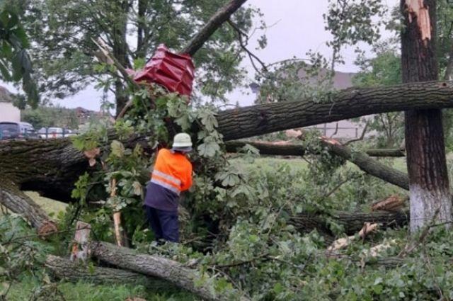 Нет электричества, повалены деревья и снесло крышу: на Закарпатье жители пострадали из-за мощного смерча
