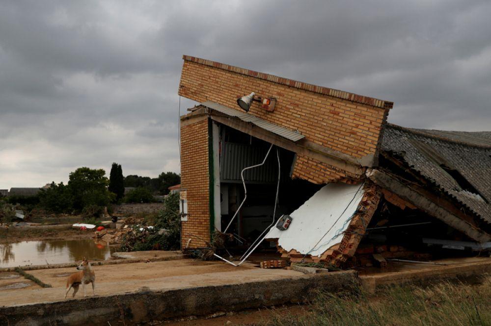 Крыша здания, рухнувшая после сильного дождя, в Тафалье.