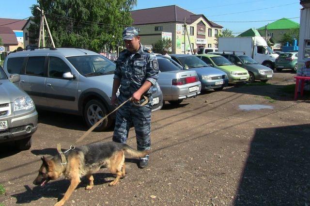В Саракташе овчарка помогла полицейским задержать вора