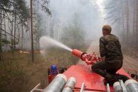 Ямальцам запретили посещать леса