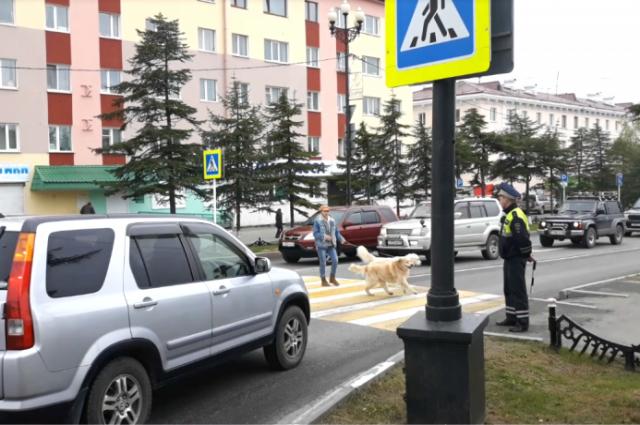 Госавтоинспекторы следят, чтобы правила дорожного движения соблюдали не только водители, но и пешеходы.