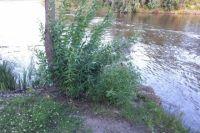 В реке Ишим утонул 12-летний подросток из поселка Октябрьский