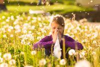 Деревья, грибок, плесень, пыль, клещи и многое другое могут «разбудить» серьёзную болезнь.