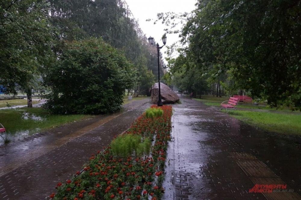 А вот аллеи, скверы и парки города преобразились — они как будто «умылись» и освежились после изнурительной жары, которая стояла в Новосибирске в конце прошлой недели.