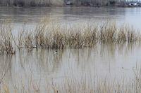 Сточные шахтные воды ПАО «Распадская» попадали в реку Ольжерас.