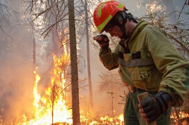 15 июля в регионе ликвидировали восемь пожаров на площади 1,6 тыс. га.
