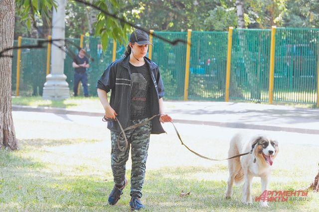Конечно, лучше гулять с собакой на специально оборудованной площадке. Но чтобы сделать её, самим владельцам животных нужно проявить инициативу