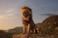 «Король Лев».