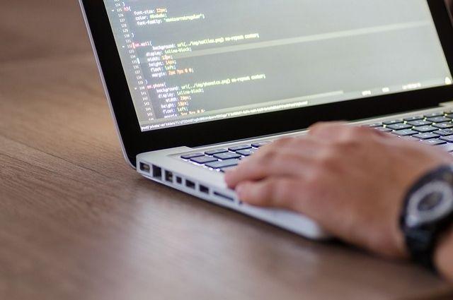 Python и PHP: тюменцев приглашают на бесплатные занятия по программированию