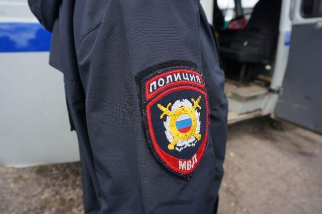 Поисками детей занимались волонтёры и полиция.