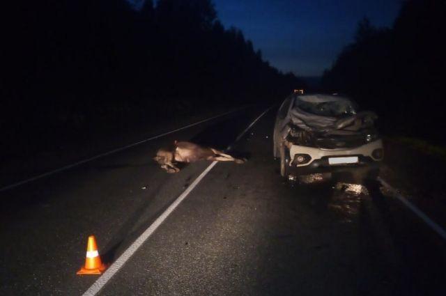 Мужчина за рулём иномарки не пострадал.