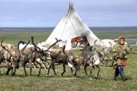 В ЯНАО обсудили дополнительные меры поддержки коренного населения