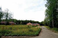 Обещанные верблюды, кенгуру и лошади Пржевальского тут так и не поселились.