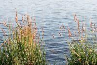 По состоянию на 12.00 21 июля на территории Пермского края все территории муниципальных образований освободились от воды