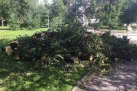 В Тюмени во время грозы ветер срывал крыши и ломал деревья