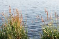 В Удмуртии женщина утонула во время сплава на байдарках