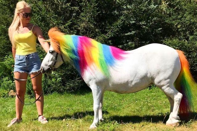 Никакого вреда пони краски не нанесут, они неагрессивные и нестойкие, но две-три недели лошадка будет радужной.