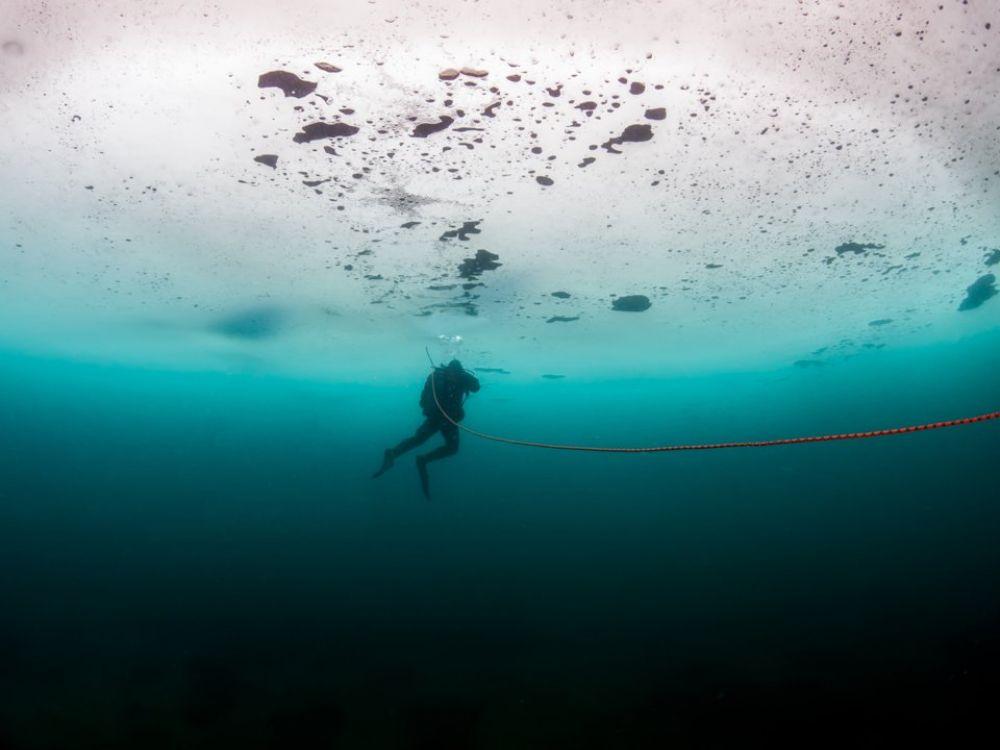 Фридайвер Энтони Уильямс из Новой Зеландии совершил самое глубокое погружение под лед, с задержкой дыхания в ластах и гидрокостюме. Наверное, ему по плечу заплывы за буйки!
