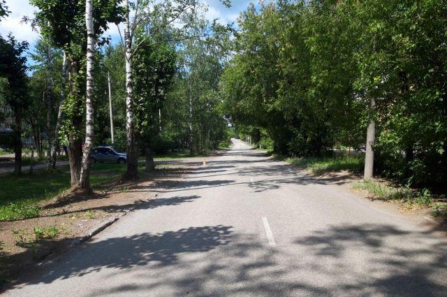 Водитель неустановленного автомобиля ехал по улице Липатова.