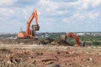 По оценкам Всероссийского общества охраны природы, вклад свалки в общее загрязнение города составляет 12-15%.