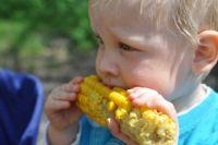 Ротавирусом часто заражаются дети, если не моют руки перед едой, находясь на пляже.