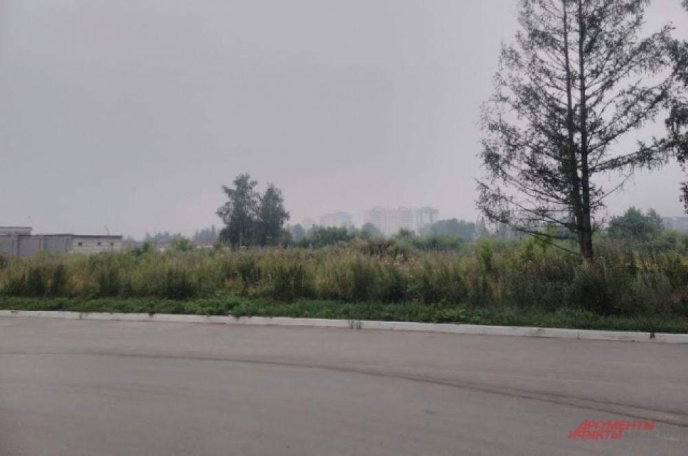 Синоптики уверены: дым уйдет из города через несколько дней, поскольку сменилось направление ветра – теперь он западный.