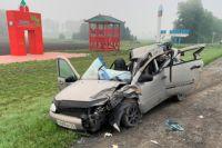 Сейчас пострадавшим оказывают медицинскую помощь врачи. Водитель трактора травм не получил.