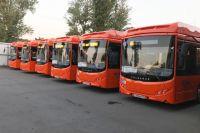 Новые автобусы поедут по улицам Новосибирска.