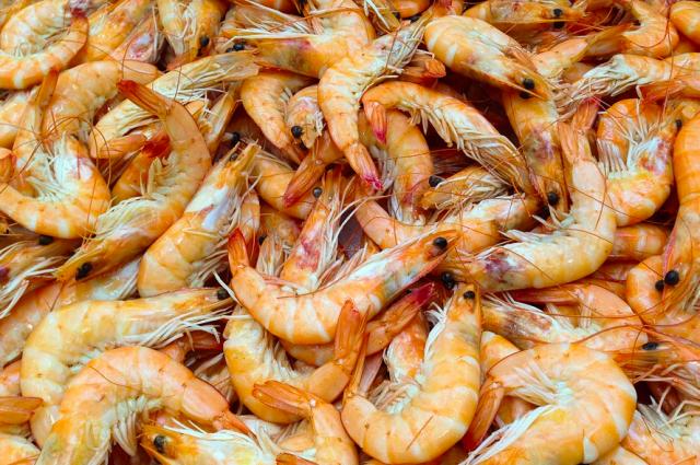 В Калининградскую область не пустили 100 тонн креветок из Аргентины